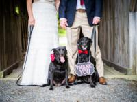 Motley and Lola's wedding day